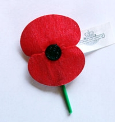 The New Zealand RSA Poppy. Every year on ANZAC day, 25 April, we remember those who fought or served at Gallipoli and in other wars.  Lest we Forget…
