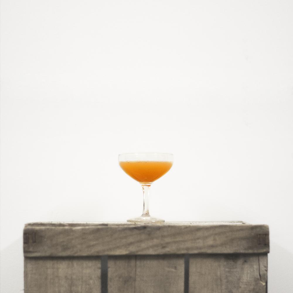 Gin Hound [Carrot]