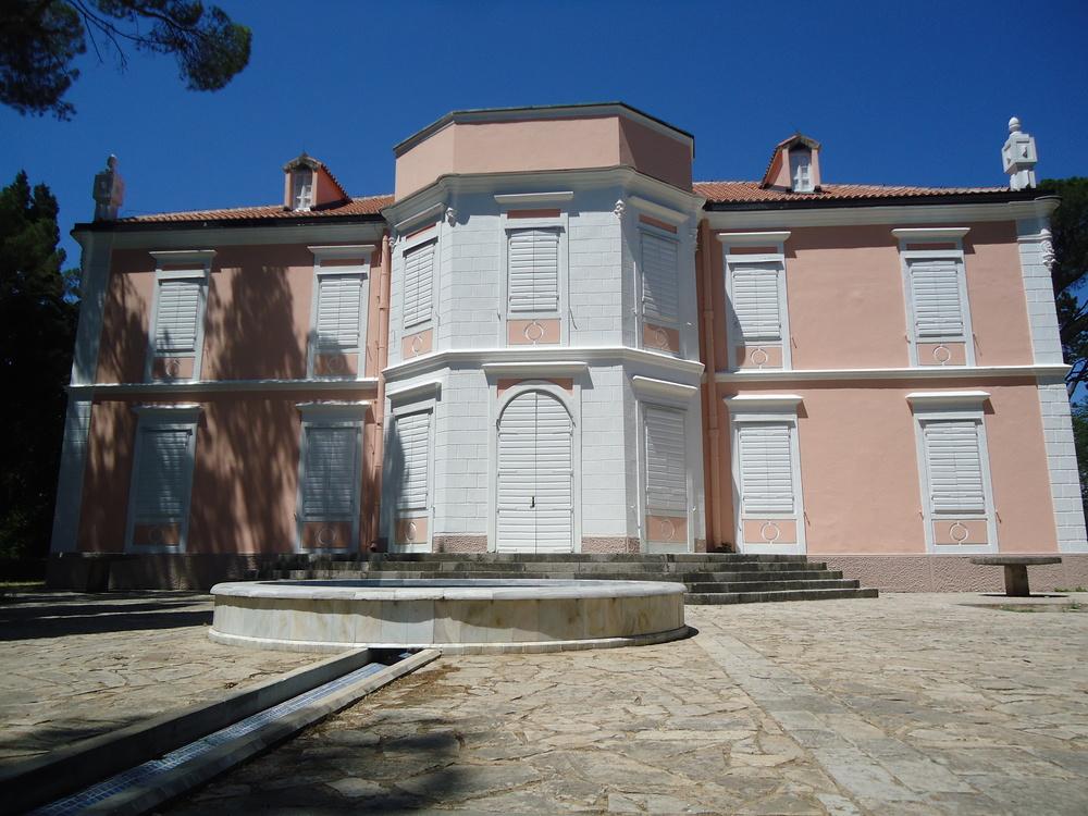 Petrovic Palace