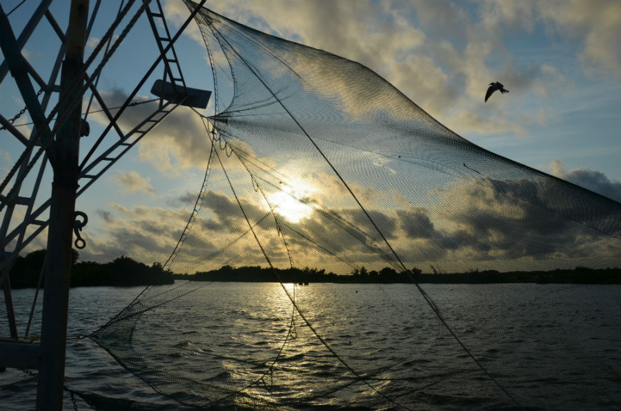 Sunset seen through a shrimp net.  Photo by Michael Pasquier