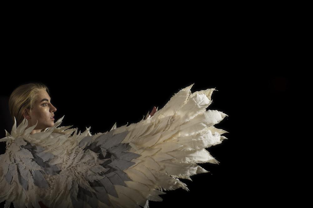 icaruswings.jpg