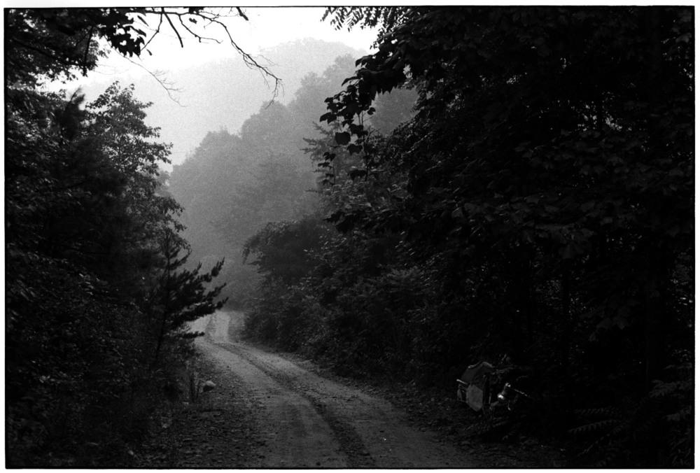Gravel road through trees, 1972©Duke University David M. Rubenstein Rare Book & Manuscript Library