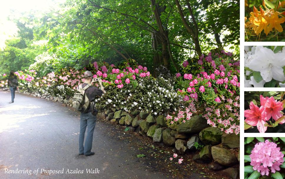 Digital rendering of the Azalea Walk at springtime.