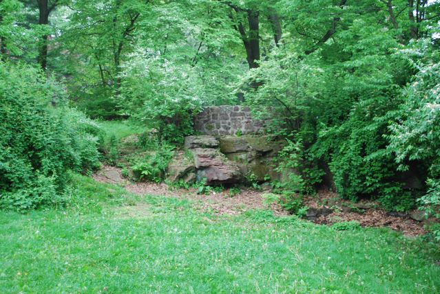 The Rock Garden and Overlook Restoration project aims to restore a hidden gem in the center of Brookdale Park.