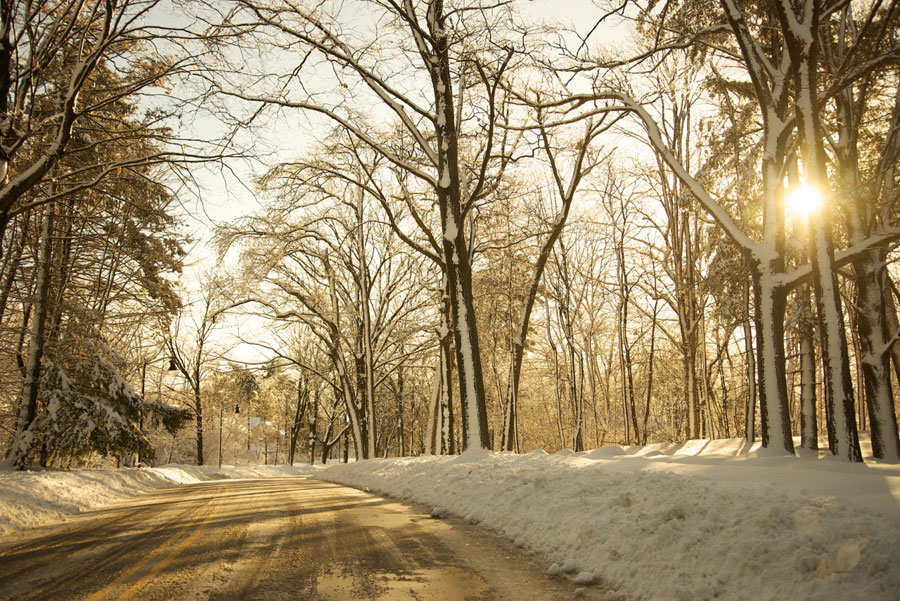 Winter in Essex County Brookdale Parkphoto by Peter Gargiulo