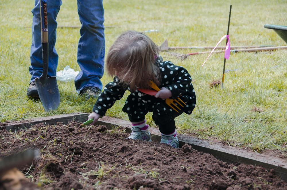 julia_planting copy.jpg