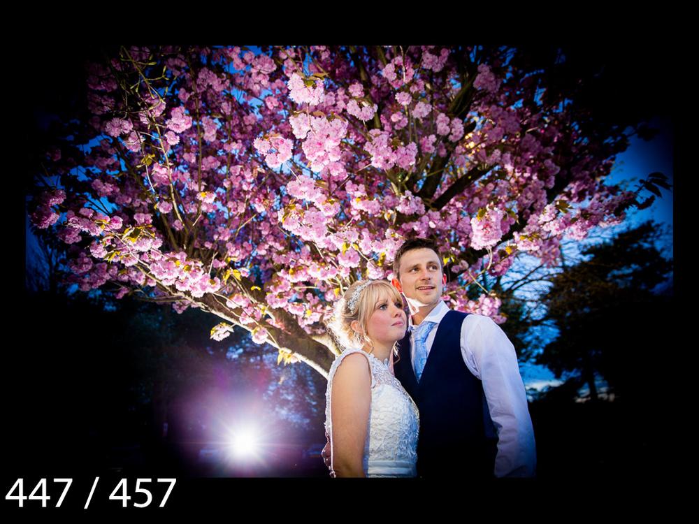 Abbie&Kieren-447.jpg