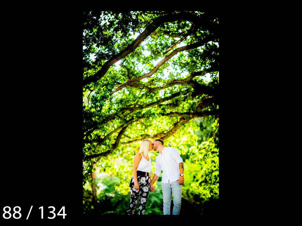 Meghan&Dale-088.jpg