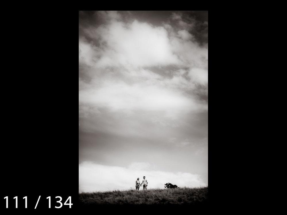 Meghan&Dale-111.jpg