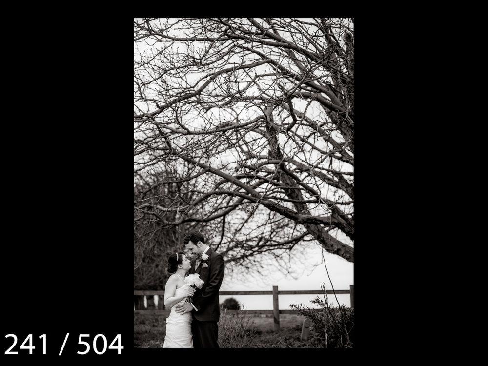 LUCY&SAM-241.jpg