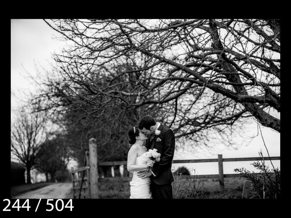 LUCY&SAM-244.jpg