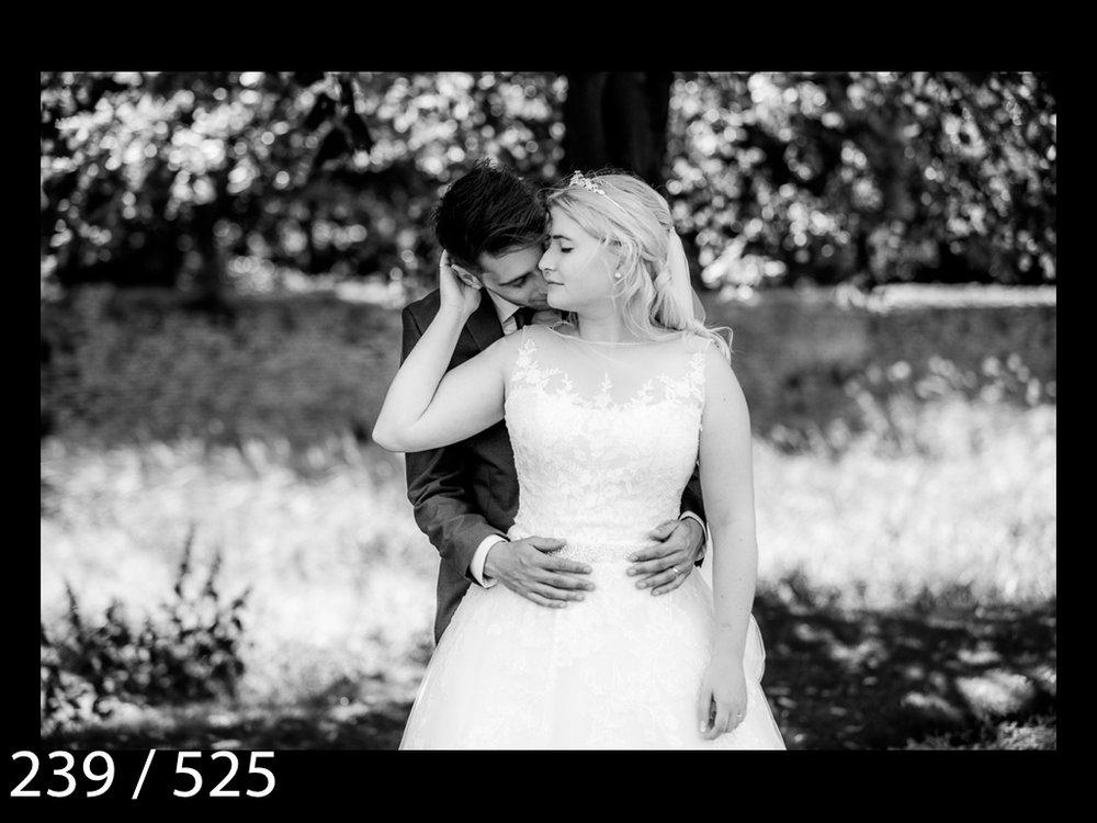 SUZY&JOSH-239.jpg