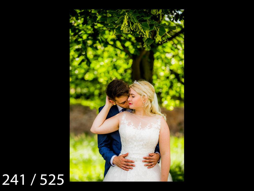 SUZY&JOSH-241.jpg