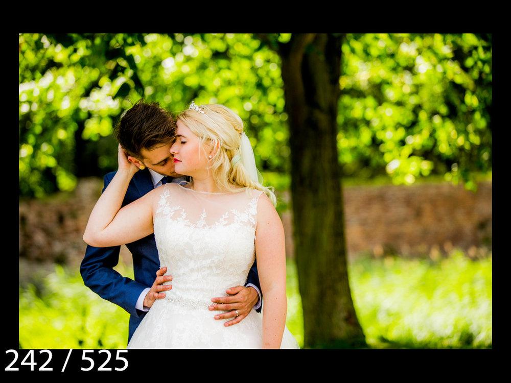 SUZY&JOSH-242.jpg
