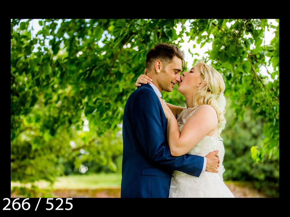 SUZY&JOSH-266.jpg