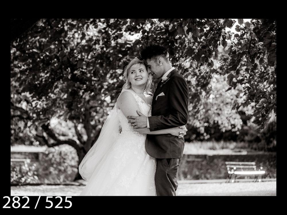 SUZY&JOSH-282.jpg