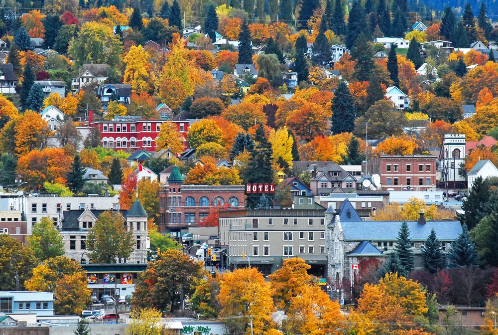 Nelson Autumn town straightened.jpg