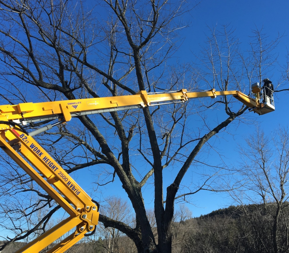 Our 82 foot track lift enables us to easily reach tree limbs.