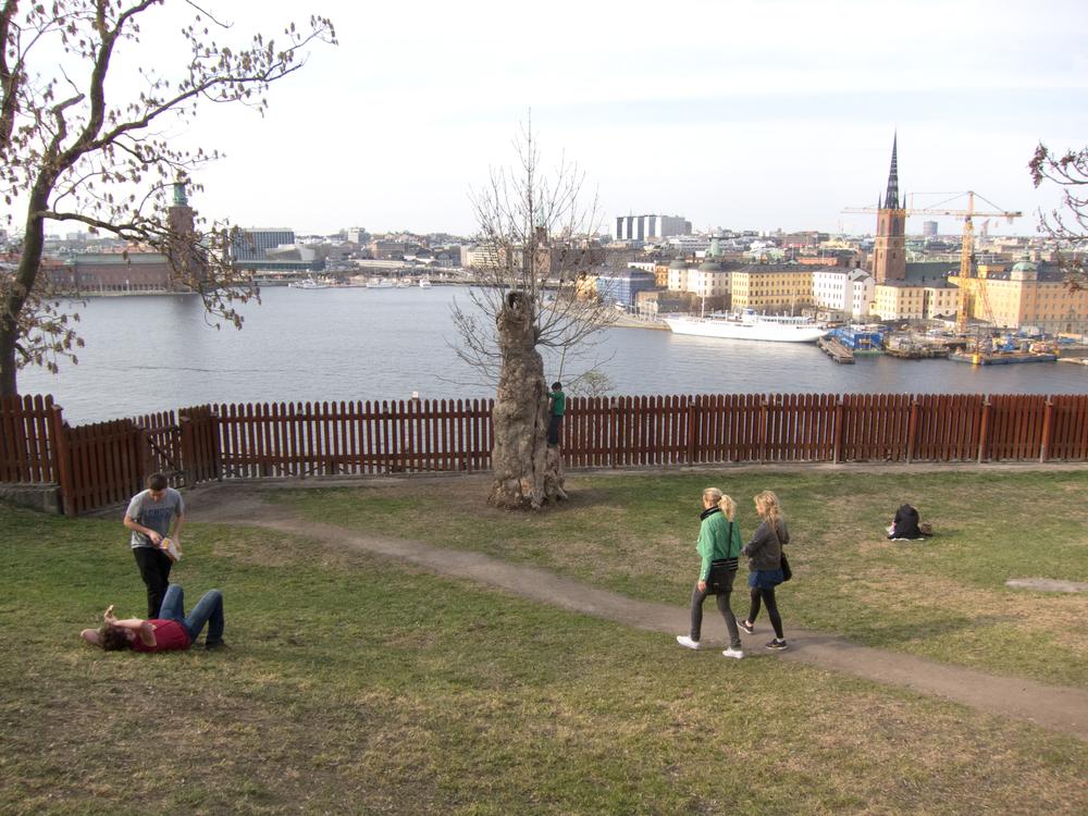 IMG_3426_stockholm_20130508.jpg