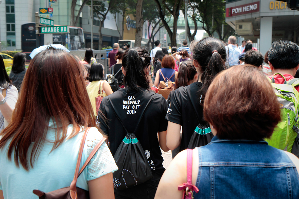 Amongst the constant throng of people along Orchard Road