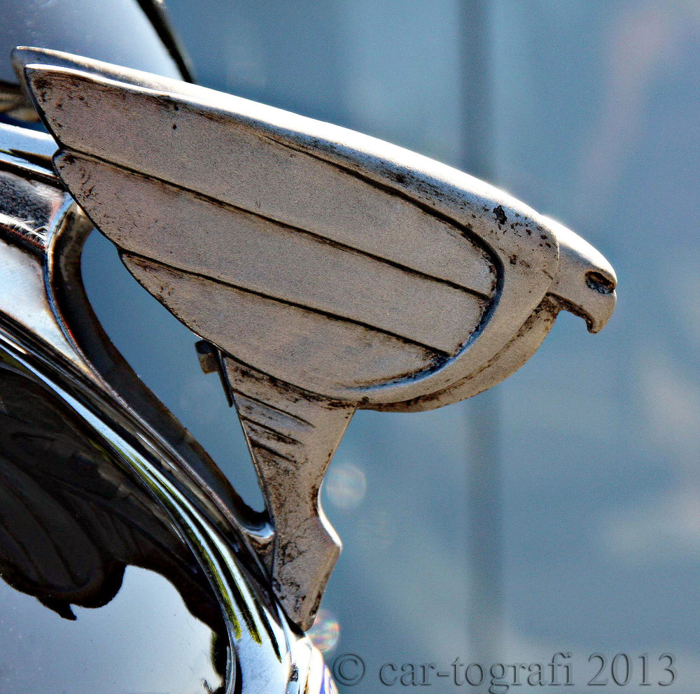 car-tografi Mascot