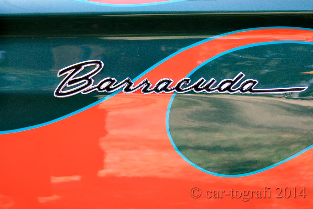 signature-barracuda-car-tografi-2014.jpg