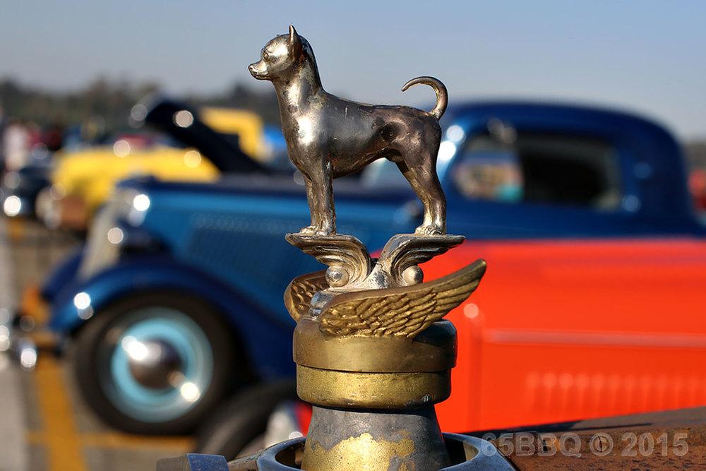 Dog Mascot Pomona Swap Meet June 7, 2015
