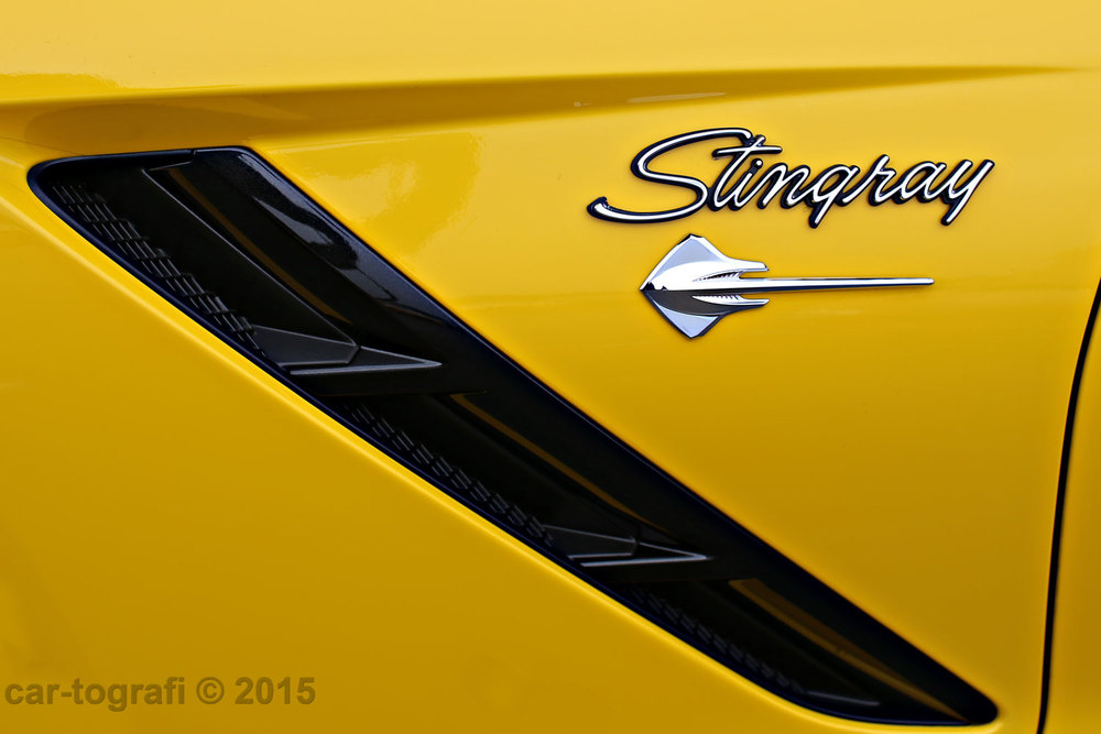 The Stingray Signature car-tografi