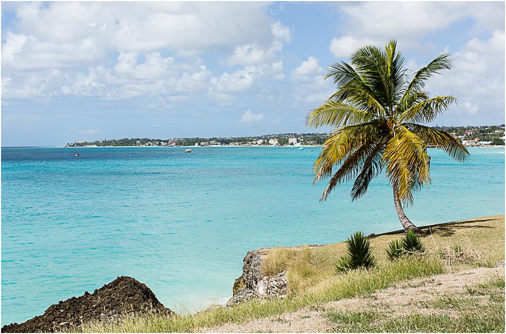 Barbados blog 2-6.jpg