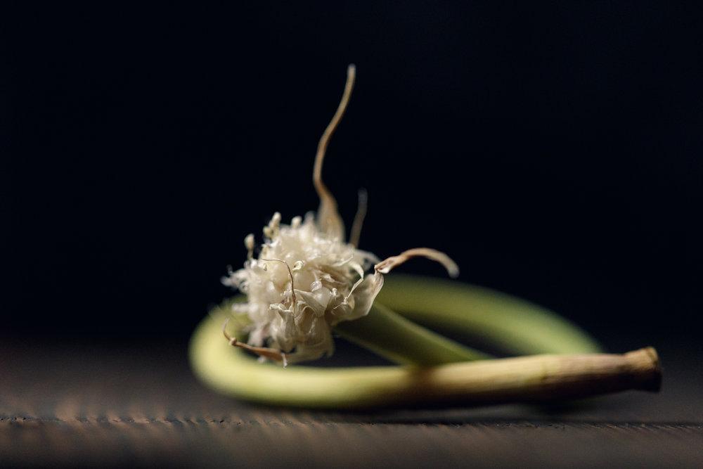 Garlic scape on cutting board