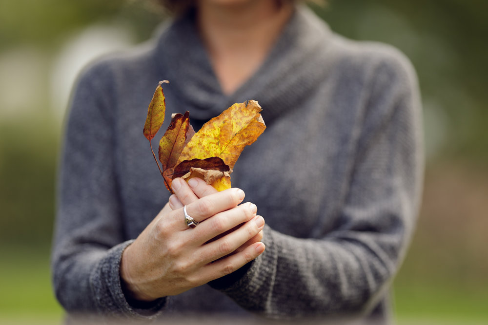 Woman's hand holding fall leaves