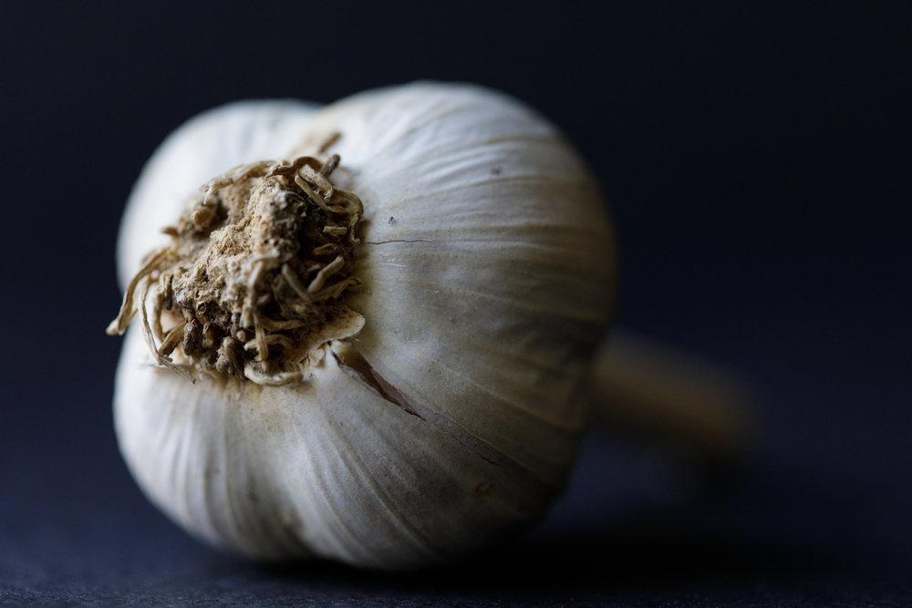 macro photo of garlic