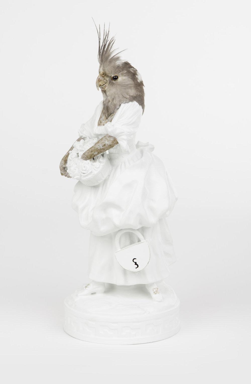 Vogel-vronwtje