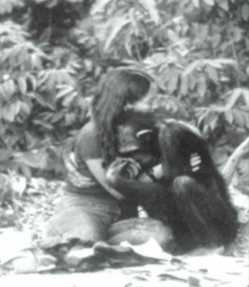 crookedindifference :      Lucy the chimpanzee  and Janice Carter hugging on Baboon Island, Gambia in 1986 - one year before Lucy's tragic death by poachers.    Learn more about Lucy  here .        (via  crookedindifference )