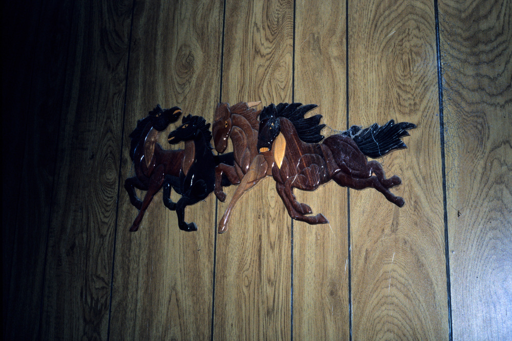 horses on the wall.jpg