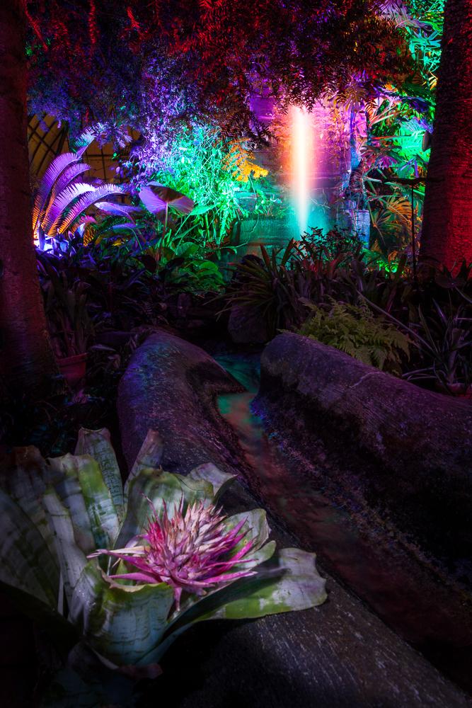 Night Lights at the Gardens 2014-303-Edit.jpg