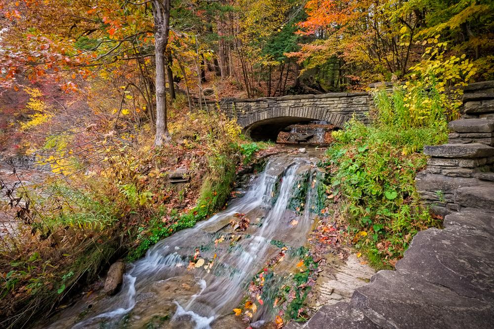 Letchworth State Park Autumn-508IR-Edit-Edit.jpg