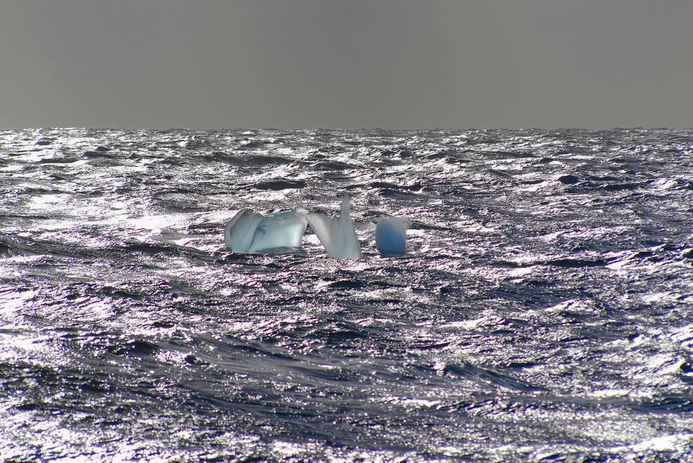 Antarctica_2007_2530a_16_verkleind.jpg