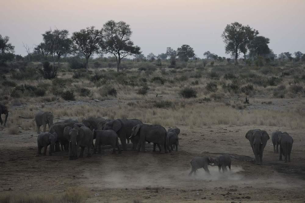 thijsheslenfeld_350_namibia.jpg