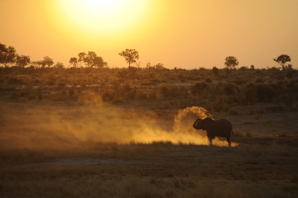 thijsheslenfeld_359_namibia.jpg