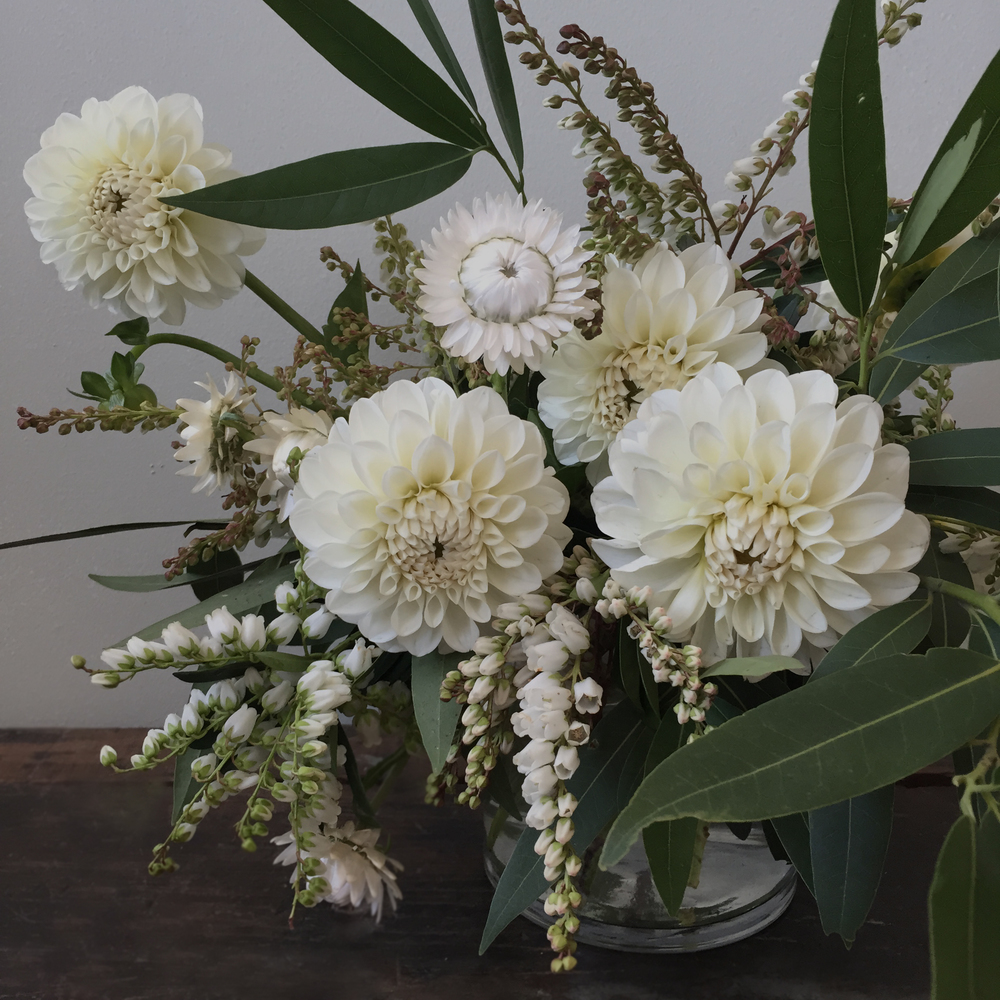 Ariel Dearie Flowers White Dahlias.jpg