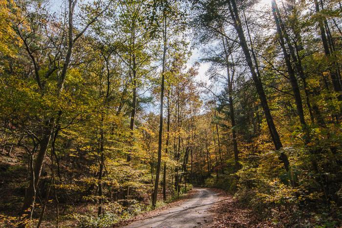 Blacksburg+-+Autumn+-+Catawba+Valley-3.jpg