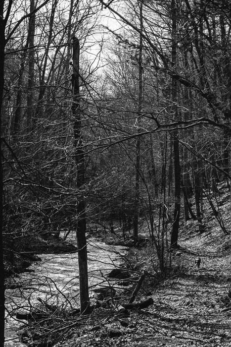 Ligon+Creek-42.jpg