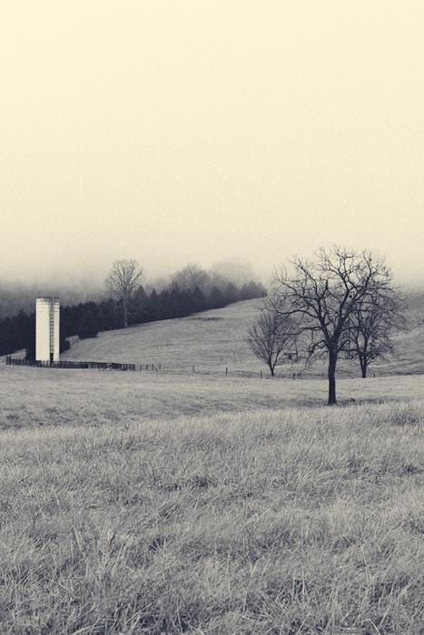 2013-February---Landscape---4.jpg