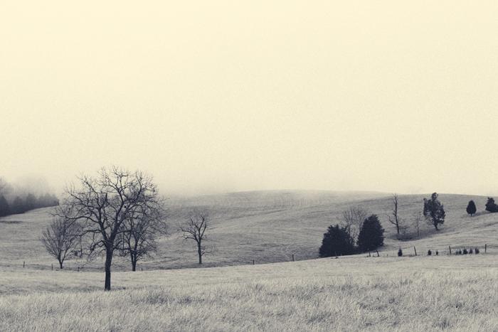 2013-February-Landscape-6.jpg