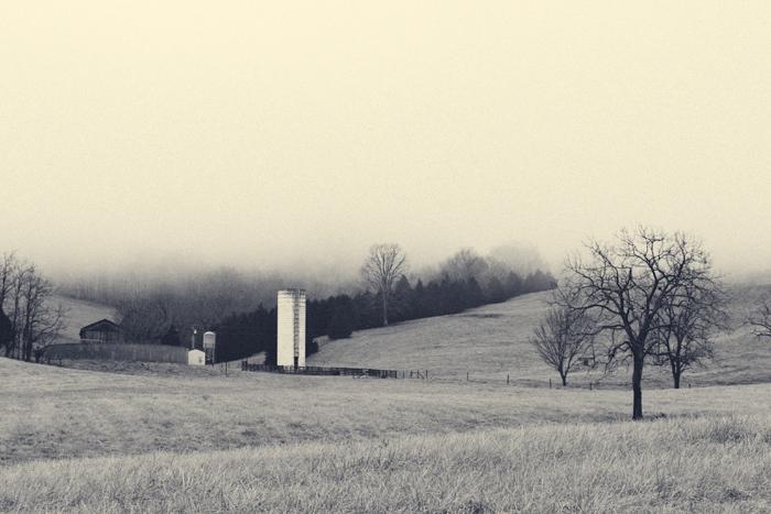 2013-February-Landscape-5.jpg