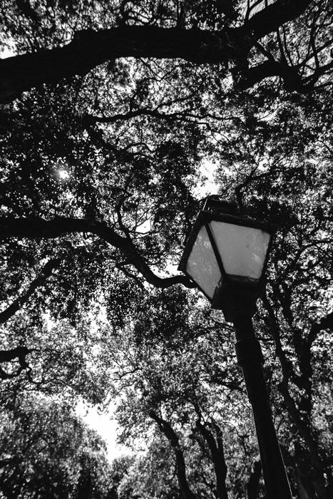 Charleston SC 2013-12.jpg