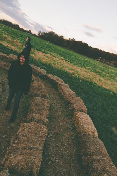 Corn Maze-5.jpg
