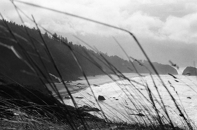 "The west coast at Crescent Beach from Ecola State Park in Oregon. Taken while visiting from Virginia. The perfect overcast, windy day. It was so windy you could ""lay"" on the wind, and it would hold you up.  Ilford HP5 Plus 400 Olympus OM-1 50mm Processed and scanned by @thedarkroomlab  #TheDarkroomLab_BW18 #blackandwhite #film #ilfordhp5 #Oregon"