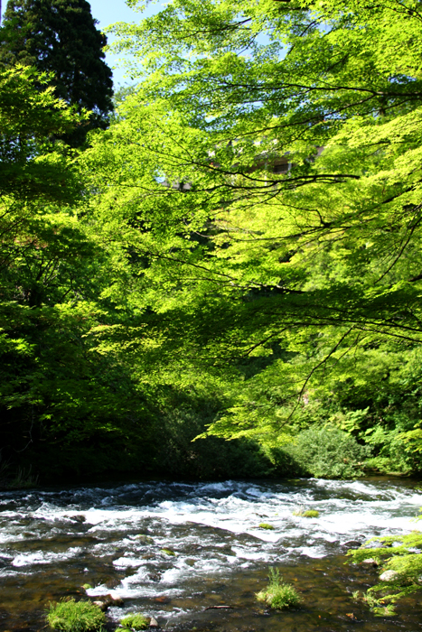 River runs through Yamanaka Onsen.